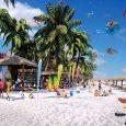 Dự án Flamingo Crowwn Bay sẽ được sớm ra mắt trong thời gian sớm nhất